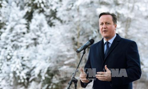 Gran Bretaña anuncia informe del impacto de Brexit  - ảnh 1
