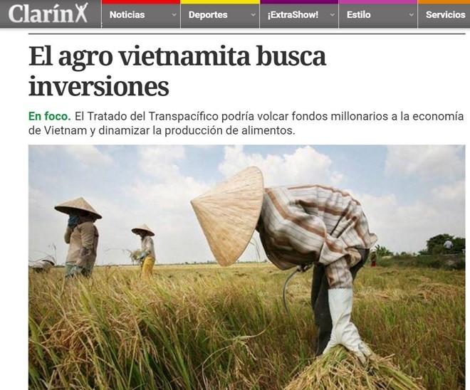 Agricultura vietnamita se beneficiará del Acuerdo de Asociación Transpacífico - ảnh 1