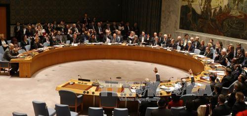 Consejo de Seguridad de la ONU pide un plan de paz para Yemen - ảnh 1