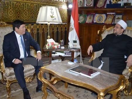 Delegación del Comité para los Asuntos Religiosos del Gobierno de Vietnam visita Egipto  - ảnh 1