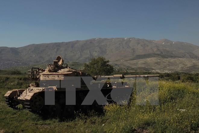 Consejo de Seguridad de la ONU rechaza anuncio israelí sobre los Altos del Golán - ảnh 1