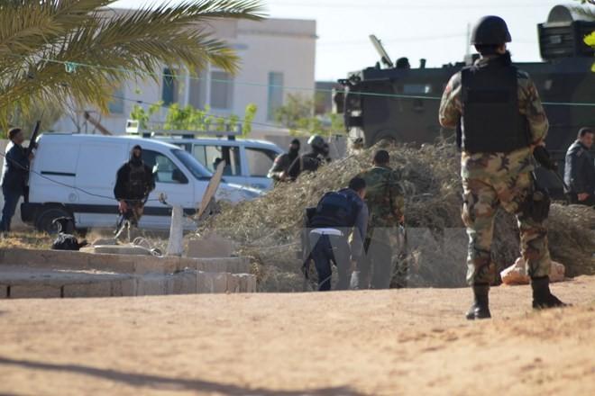 Desmantela Túnez conspiración de ataque terrorista   - ảnh 1