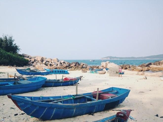 Bienvenidos a isla Robinson, nuevo destino turístico de aventura de Vietnam - ảnh 1