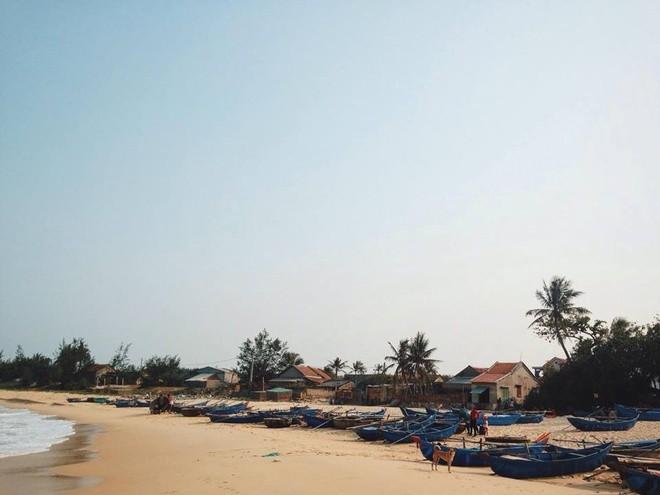 Bienvenidos a isla Robinson, nuevo destino turístico de aventura de Vietnam - ảnh 3
