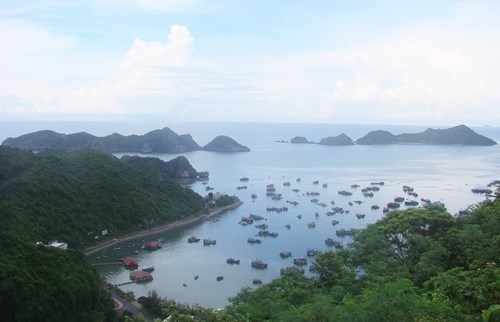 "Semana Nacional de Mar e Islas de Vietnam bajo lema "" Por un planeta verde"" - ảnh 1"