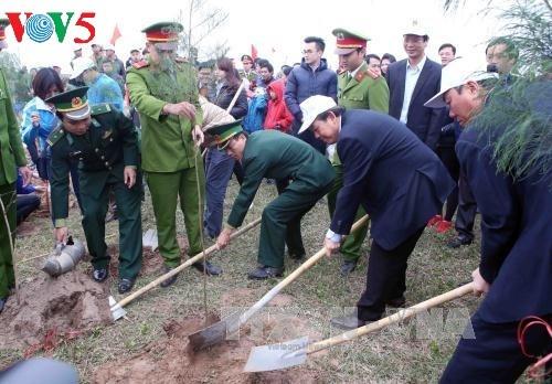 Jóvenes promueven la siembra de árboles en contribución a la protección ambiental - ảnh 1