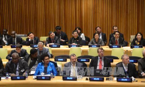 Vietnam comprometido en proteger el ambiente marino junto a la comunidad mundial - ảnh 1
