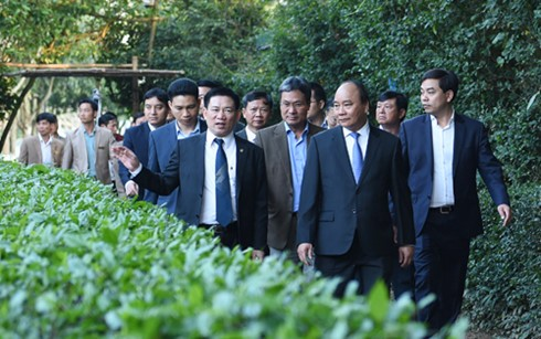 Primer ministro vietnamita rinde homenaje al Presidente Ho Chi Minh - ảnh 1