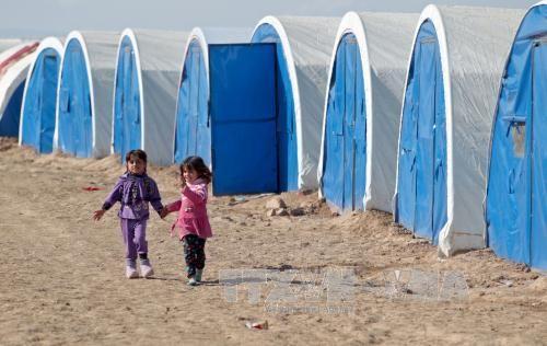 Canadá ratifica compromiso de acoger a refugiados iraquíes  - ảnh 1