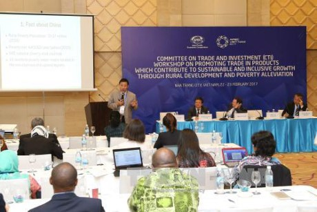 APEC 2017: Vietnam sigue ofreciendo iniciativas - ảnh 1