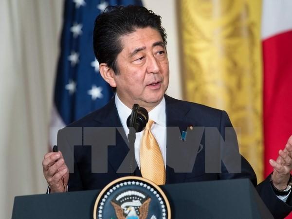 Premier japonés visitará Rusia - ảnh 1