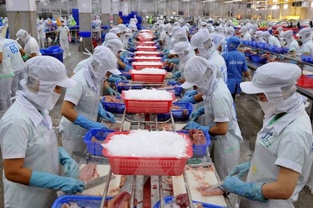 Exportación de productos acuíferos de Vietnam para cumplir la meta trazada de 2017 - ảnh 2