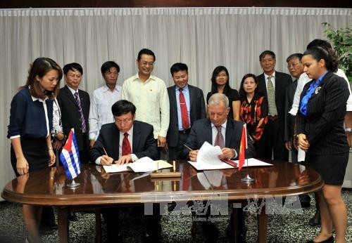 Vietnam entrega 5000 toneladas de arroz a Cuba - ảnh 1