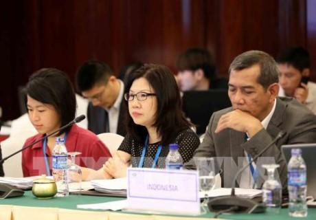 Prosiguen en Ciudad Ho Chi Minh las reuniones de SOM3 de APEC  - ảnh 1