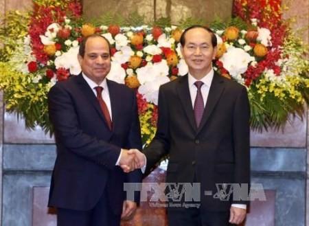 Vietnam y Egipto estrechan vínculos - ảnh 1