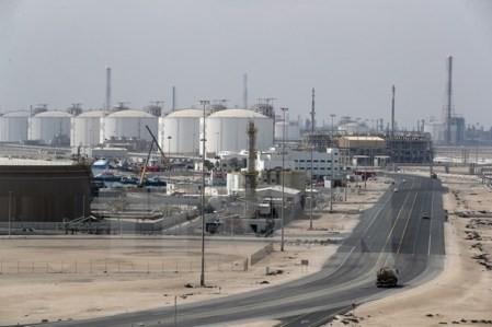 La crisis de Qatar es negativa para todos los países implicados - ảnh 1