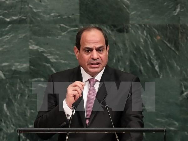 Presidente egipcio muestra su disposición de apoyar el proceso de paz en Oriente Medio - ảnh 1