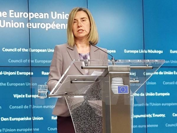 El Acuerdo de Diálogo Político y Cooperación entre Cuba y la UE entra en vigor - ảnh 1