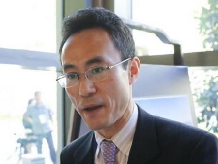 Japón quiere contribuir activamente al éxito de la Cumbre APEC 2017 - ảnh 1