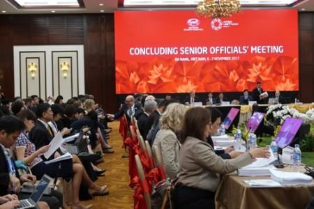 Inauguran la Semana de la Cumbre del APEC 2017 en la ciudad centrovietnamita de Da Nang - ảnh 2