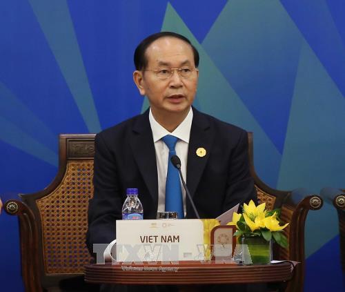 El presidente vietnamita aboga por impulsar el papel impulsor del APEC en la región - ảnh 1