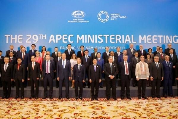 Éxito del Año APEC 2017 crea nuevo impulso para el desarrollo de Vietnam - ảnh 1