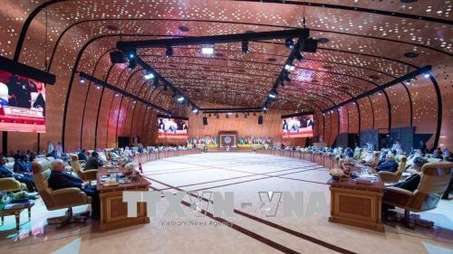 Liga Árabe reafirma apoyo a la paz en la región - ảnh 1