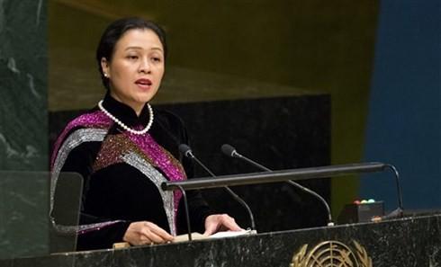 Vietnam promete contribuir a la paz y la seguridad mundial - ảnh 1