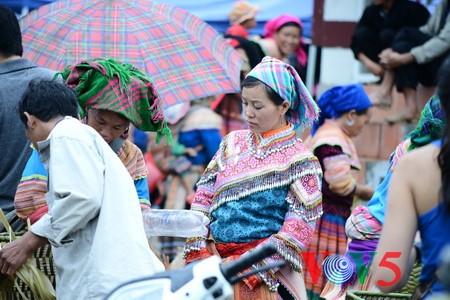 Consejo Étnico del Parlamento vietnamita pasa balance a su trabajo - ảnh 1