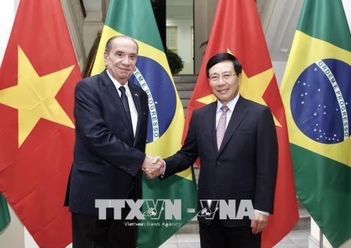 Vietnam interesado en afianzar la cooperación integral con Brasil - ảnh 1