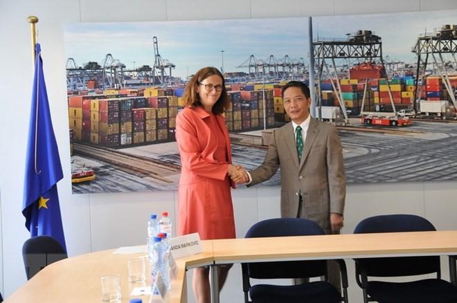 Perspectivas de cooperación económica entre Vietnam y socios - ảnh 2