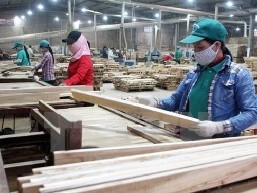 Sector silvícola de Vietnam apuesta por elevar a 9 mil millones de dólares sus ventas externas - ảnh 1