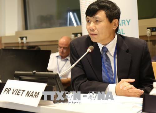 Ratifican la participación proactiva de Vietnam en las operaciones de la ONU - ảnh 1