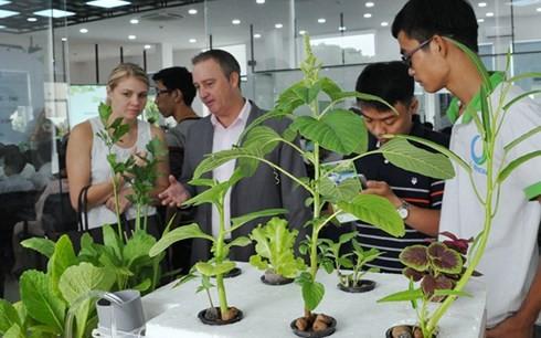 Ciudad centrovietnamita brinda apoyos a decenas de proyectos emprendedores - ảnh 1
