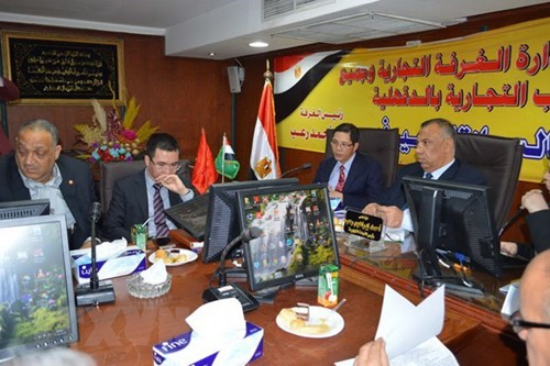 Prensa egipcia aprecia perspectivas de cooperación multifacética con Vietnam - ảnh 1