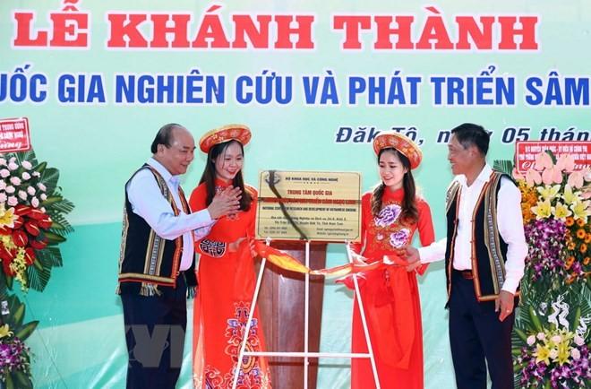 Ginseng Ngoc Linh es tesoro de Vietnam, afirma el jefe del Gobierno - ảnh 1