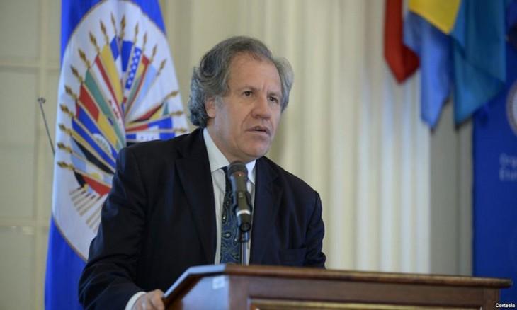 Grupo de Lima rechaza injerencia militar en Venezuela - ảnh 1