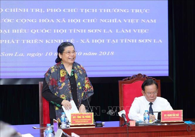 Vicepresidenta parlamentaria vietnamita trabaja con dirigentes de Son La  - ảnh 1