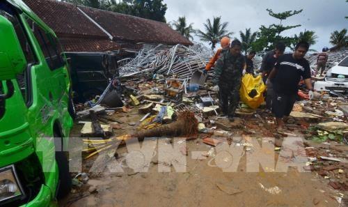 Dirigentes vietnamitas manifiestan solidaridad con gobierno y pueblo de Indonesia tras tsunami - ảnh 2