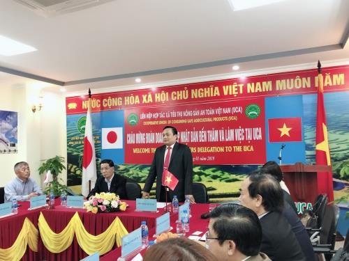 Empresas japonesas buscan oportunidades de inversión en agricultura de Vietnam - ảnh 1