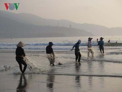 Reanudan producción agrícola en localidades vietnamitas tras días feriados del Tet - ảnh 2