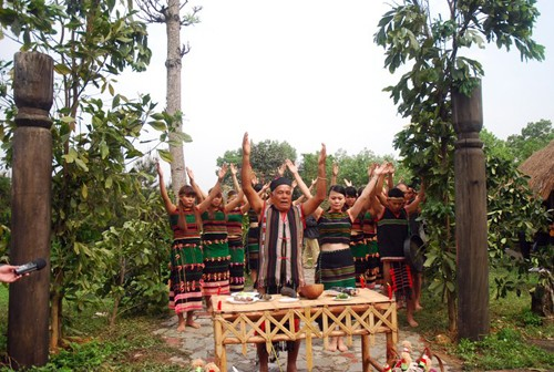 Homenaje a la entrada aldeana, una tradición ancestral de la etnia M'nong - ảnh 1