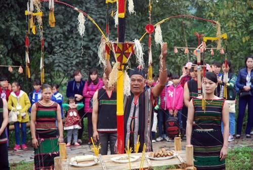 Homenaje a la entrada aldeana, una tradición ancestral de la etnia M'nong - ảnh 3