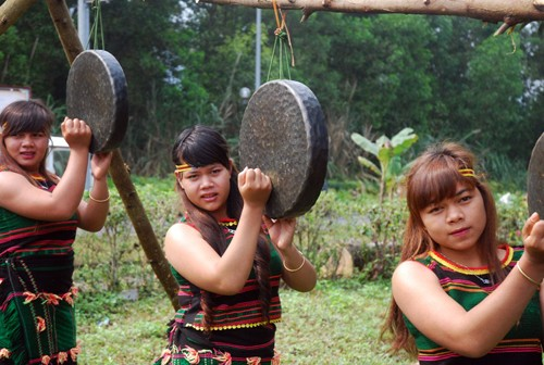 Homenaje a la entrada aldeana, una tradición ancestral de la etnia M'nong - ảnh 4