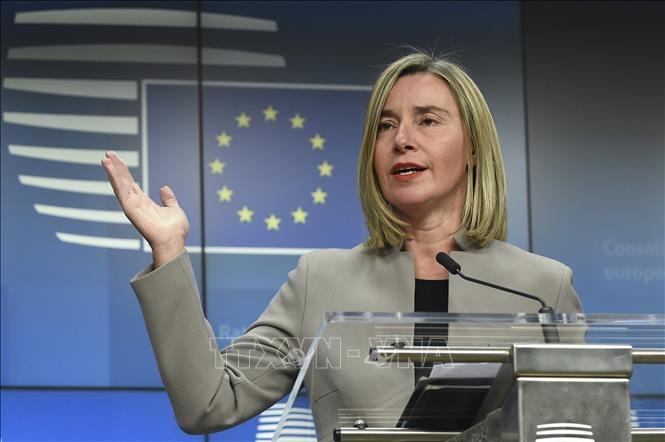 Unión Europea reacciona ante aplicación por Washington de norma contra Cuba - ảnh 1