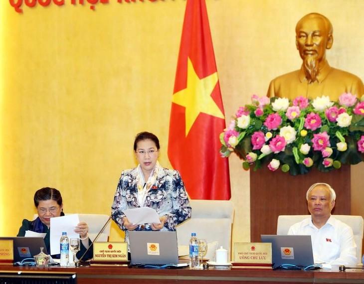 Comité Permanente del parlamento vietnamita revisa leyes y trabajos del gobierno - ảnh 1