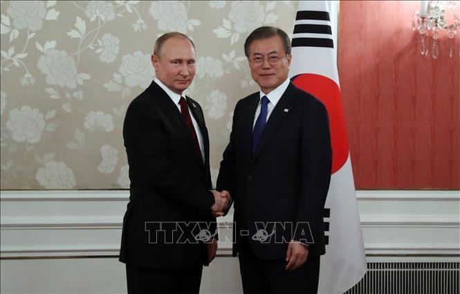 Rusia y Corea del Sur impulsan el diálogo entre Washington y Pyongyang - ảnh 1