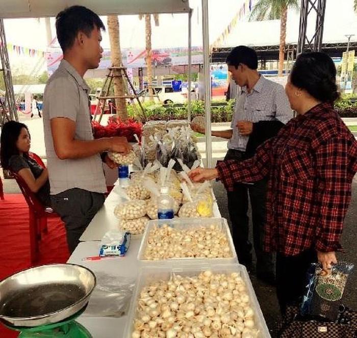 Inauguran en Da Nang Feria Internacional de Comercio y Turismo  - ảnh 1