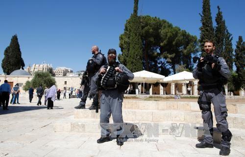 ปาเลสไตน์เรียกร้องให้ประชาคมระหว่างประเทศยับยั้งแผนการก่อสร้างของอิสราเอลในเยรูซาเลมตะวันออก - ảnh 1