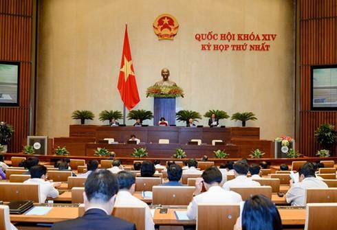 การประชุมครั้งแรกรัฐสภาเวียดนามสมัยที่ 14 บรรลุเป้าหมายที่วางไว้ - ảnh 1